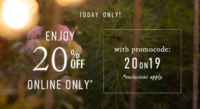 Today online only! Enjoy 20% off the entire site with promocode 20ON19