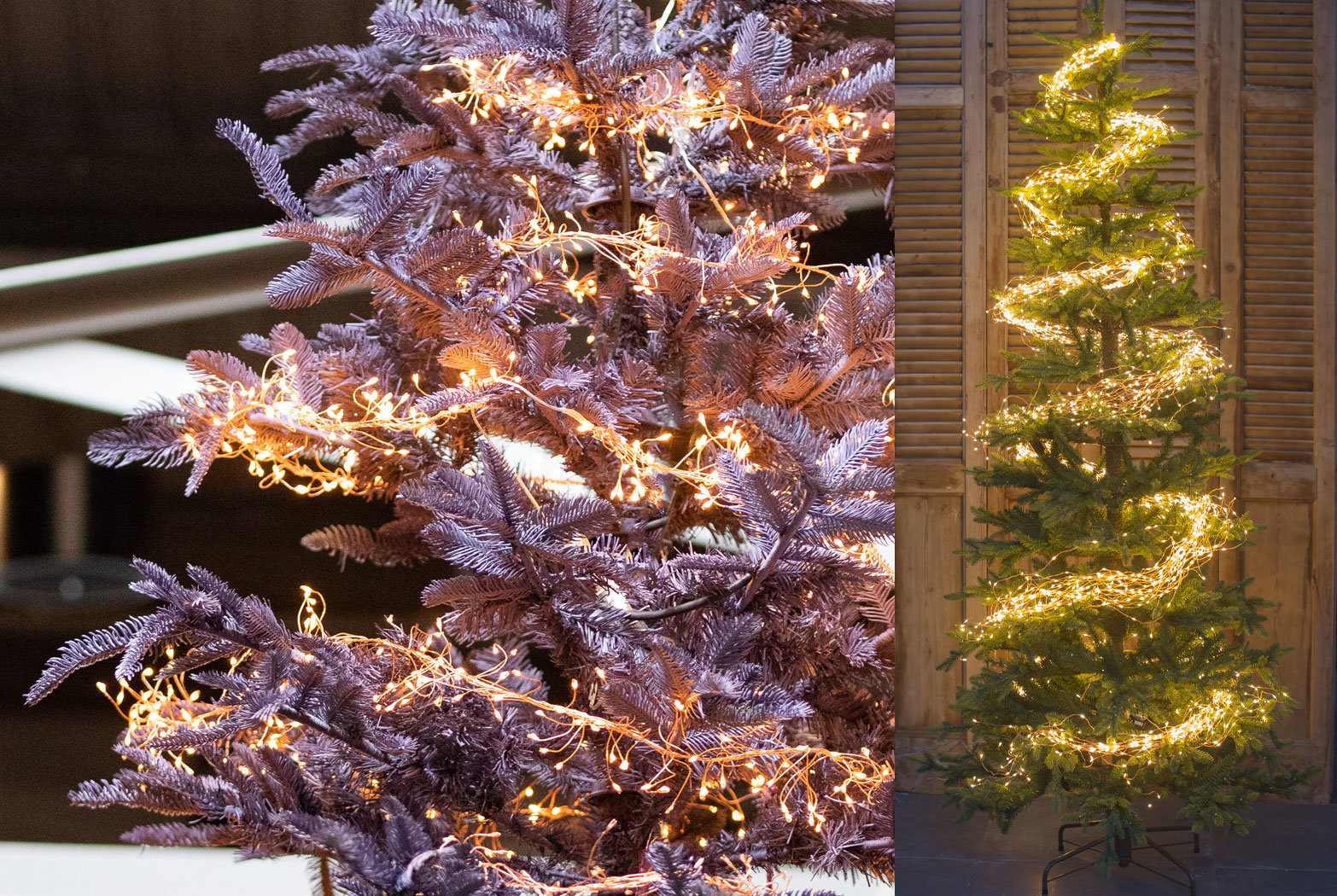 Christmas Tree Lighting Tips From Our