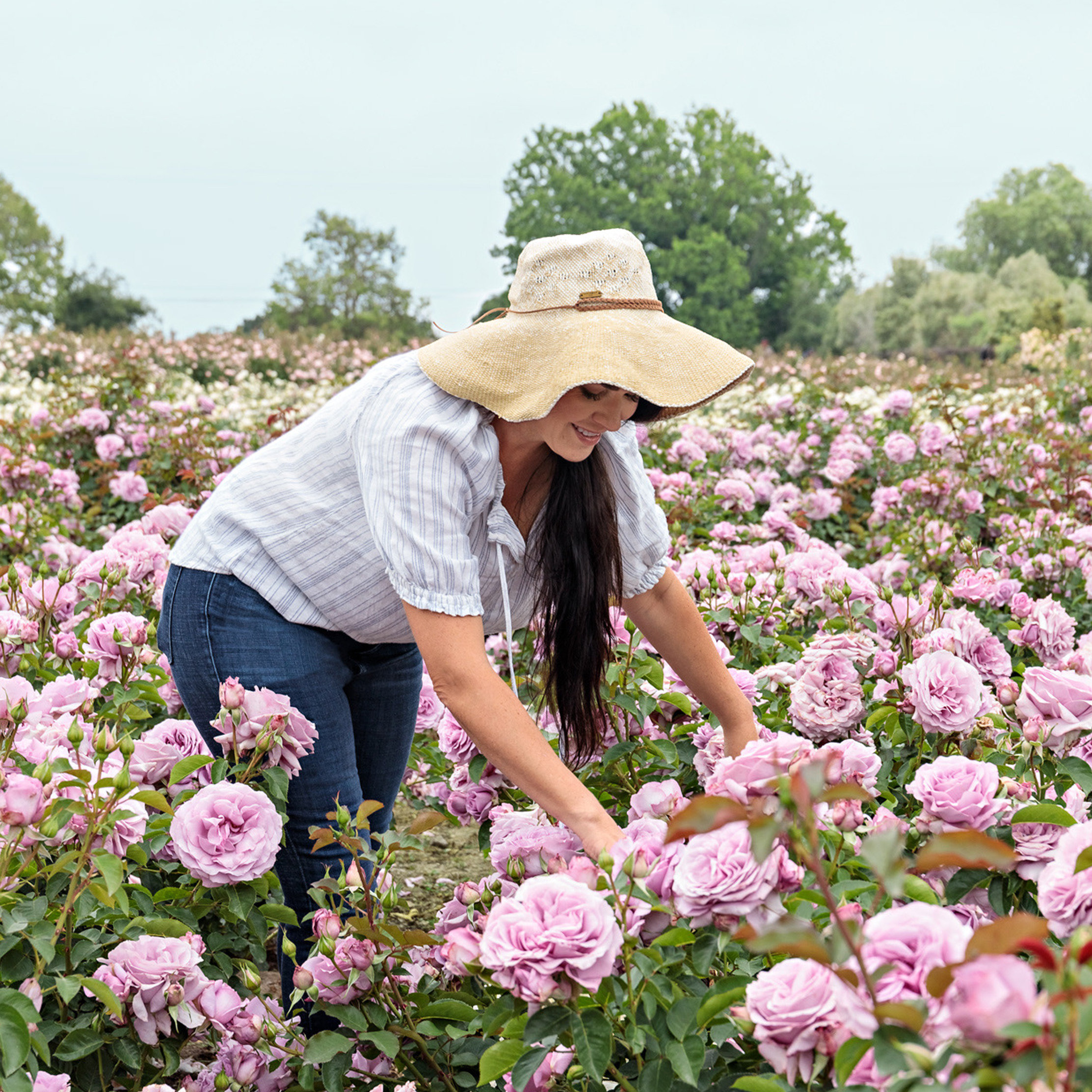 A Tour of Grace Rose Farm with Founder Gracie Poulson