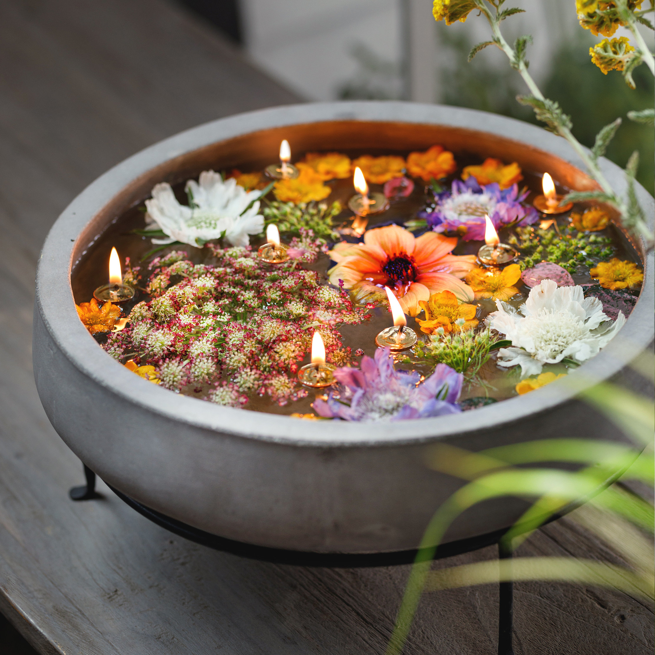 A Floating Garden Centerpiece With Our Creative Stylist Terrain